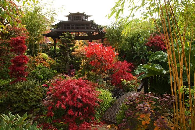 Autumn peace and beauty in the middle garden