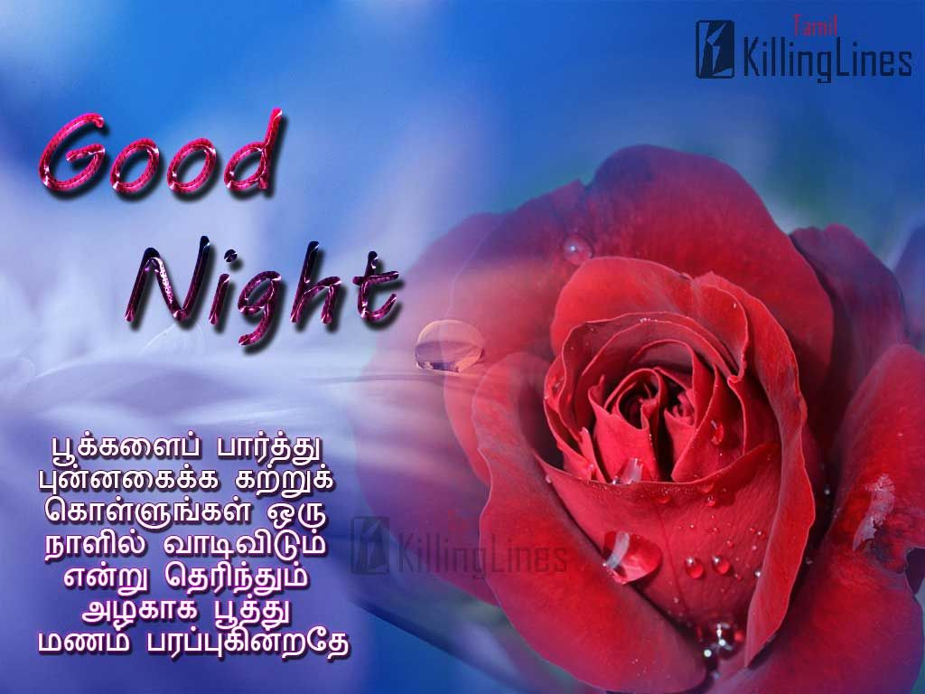 Tamil Nice Good Night Greetings Images With Nice Inspiring Tamil Quotations For Share On Facebook Good Night Messages Night Pictures Good Night Greetings