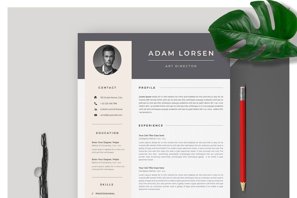 Resume Template 4 Page CV Template Cv template, Resume