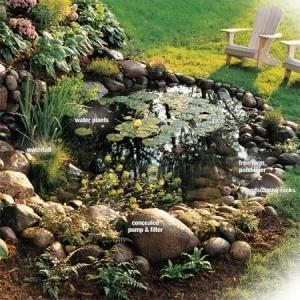How to Build a Water Garden With Waterfall: Put a little ...