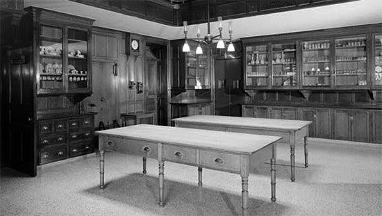Victorian Butler's Pantry - Victoriana Magazine | kitchen ...