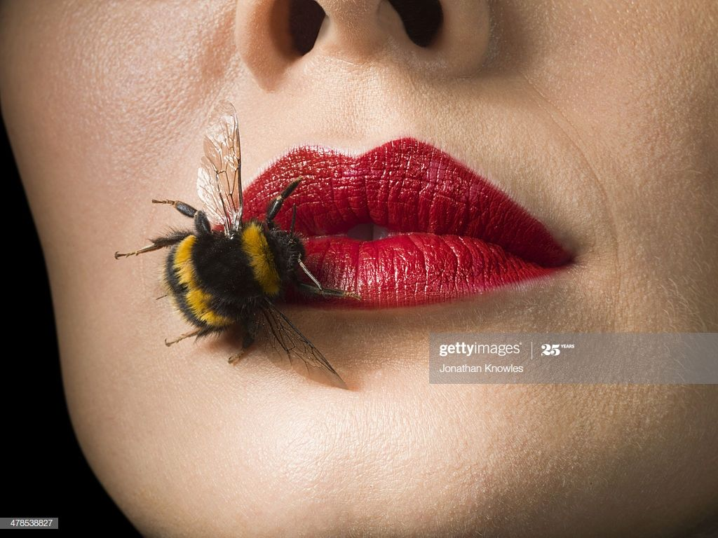 Bee On Female Lips With Red Lip Stick On Photography #Ad, , #AFF, #Lips, #Female, #Bee, #Red