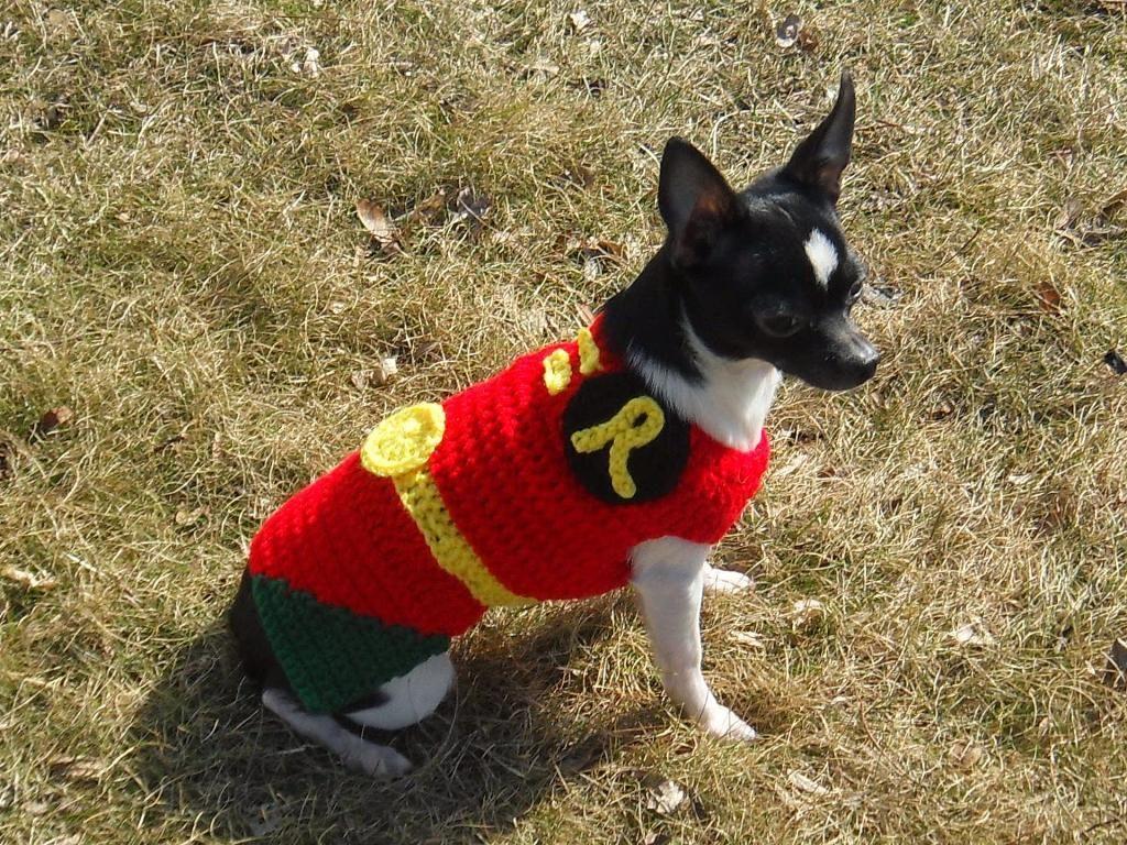 Robin Batman Robin Dog Costume Via Craftsy Crochet Dog