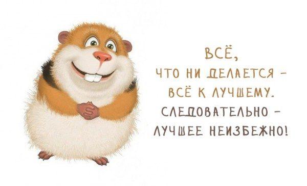 Pozitivnye Kartinki 28 Foto S Izobrazheniyami Pozitivnye
