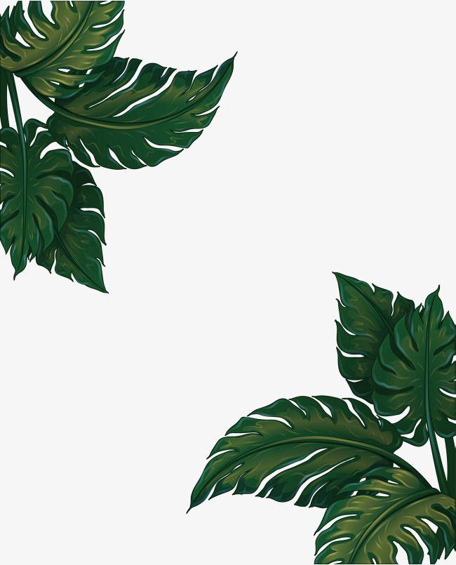 Green Banana Leaf Frame Vector Png Banana Leaf Green Banana Leaves Png Transparent Clipart Image And Psd File For Free Download Ilustrasi Pola Warna Koral Tato Burung Hantu