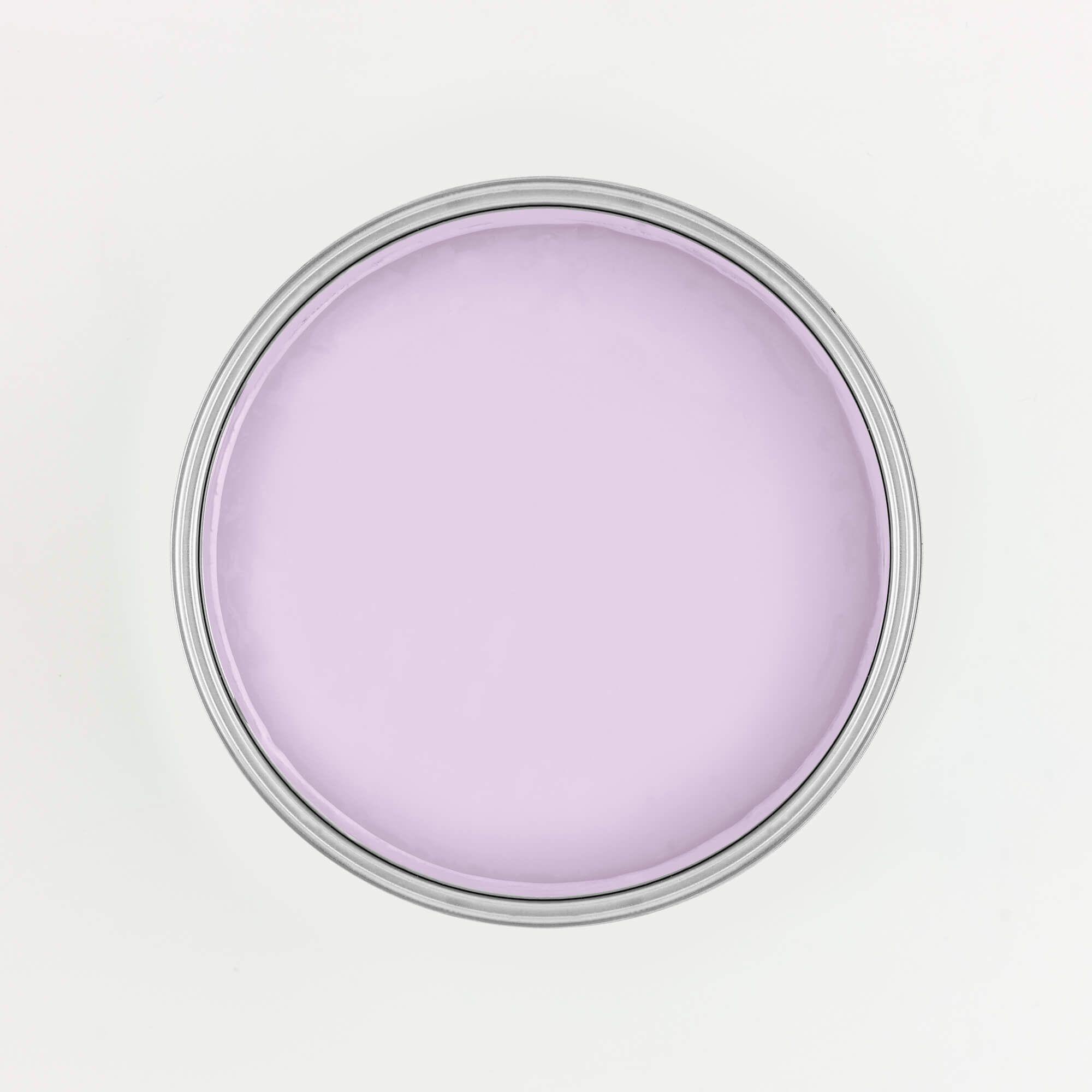 Shop ≫ Penelope in 2020 Vocs, Penelope, Color card