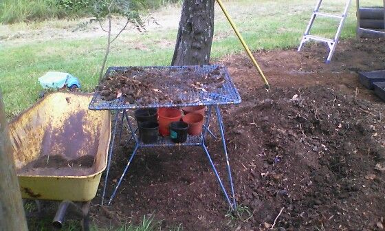 My compost sieve and instant pot filler with take away wheelbarrow for all the rough stuff :)