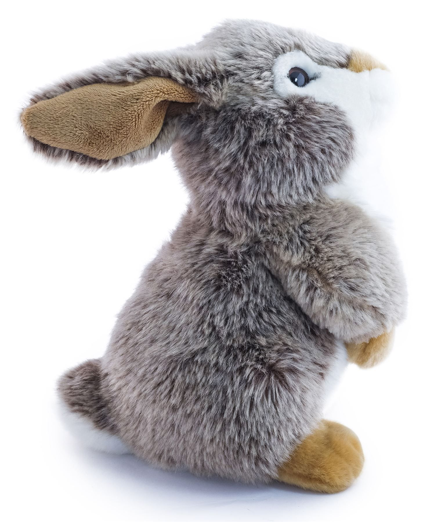 Robin the Big Cheek Rabbit 10 Inch Stuffed Animal Plush