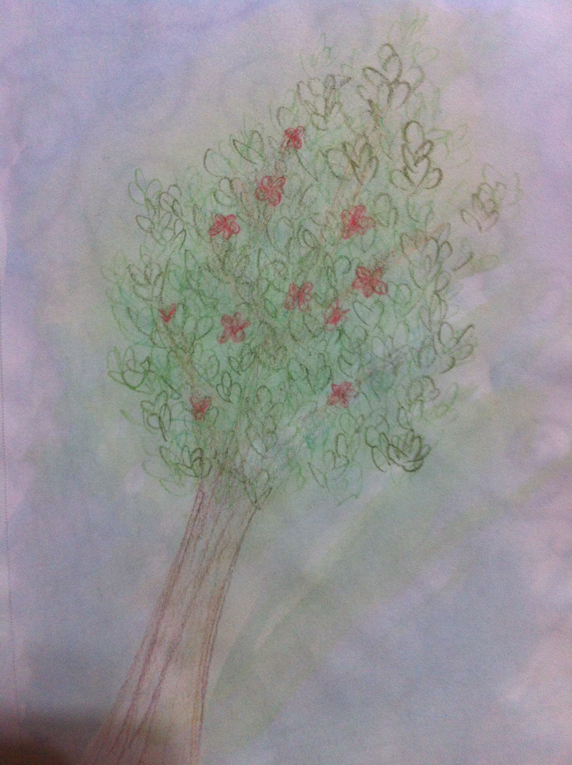 Tree, with watercolor and colored pencil | Drawings | Pinterest ...