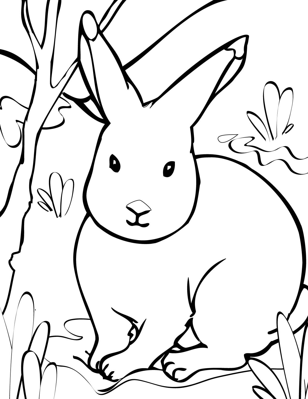 Animal Coloring Pages Print This