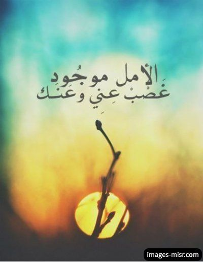 Pin By Um Alror On 10 Arabic Quotes Arabic Quotes Photo Quotes Qoutes