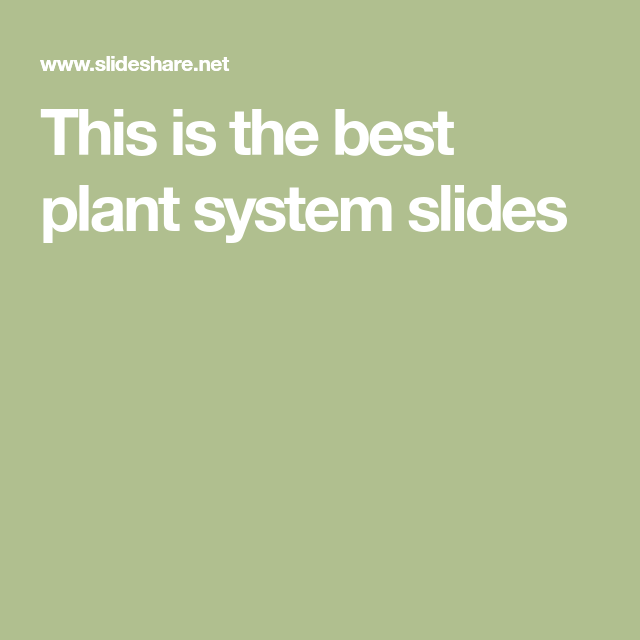 Photo of The plant system