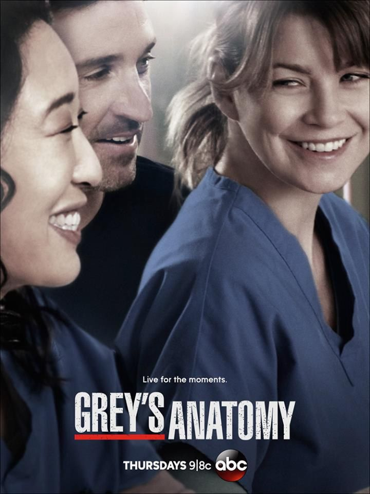 Novos Posteres Da 10ª Temporada De Grey S Anatomy Grey S