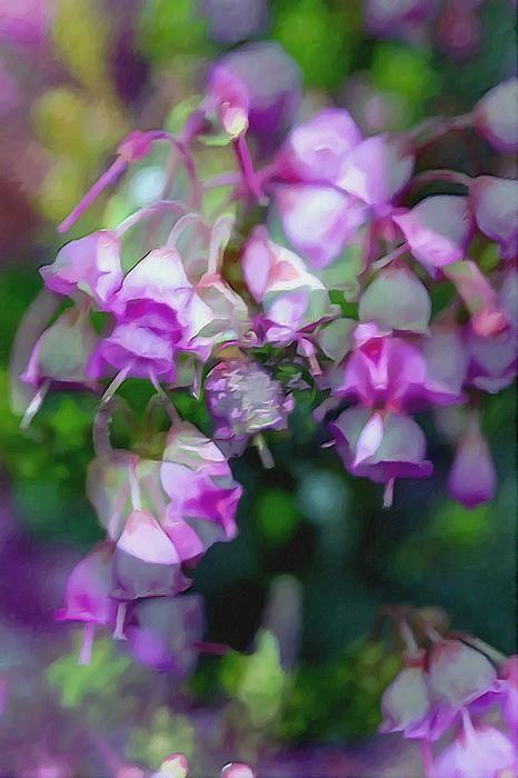 Pink Heather Flower