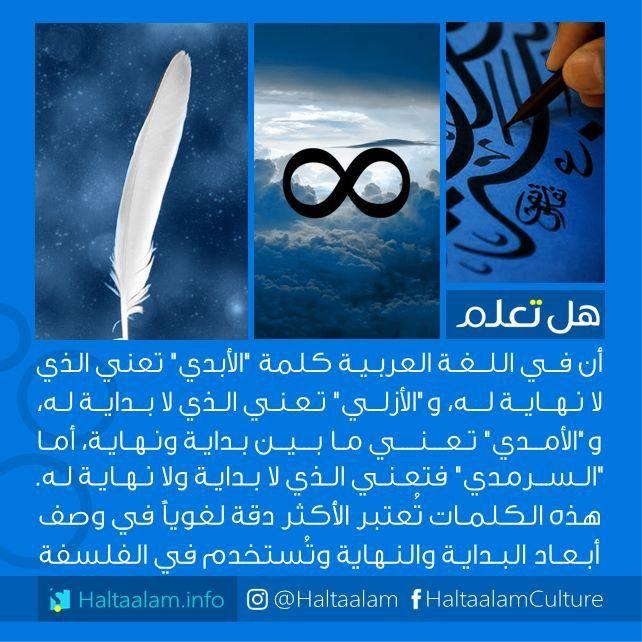 حب سرمدي Arabic Quotes Funny Arabic Quotes Quotes For Book Lovers