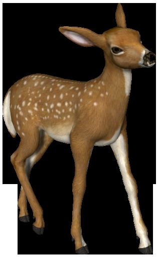 Deer Png Images Free Download Deer Png Woodland Animal Art Deer Drawing Animal Paintings