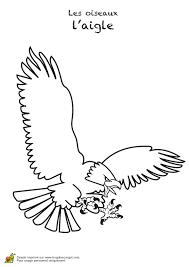 Resultat De Recherche D Images Pour Une Jeune Homme Avec Un Aigle
