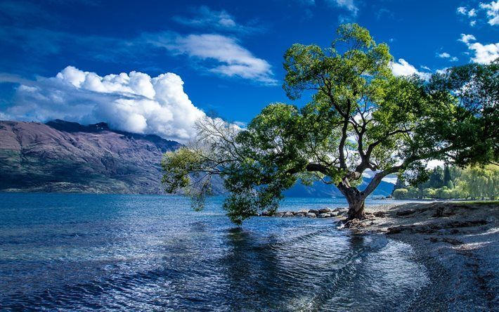 Video Neuseeland Pinterest: Herunterladen Hintergrundbild Neuseeland, Sommer, See