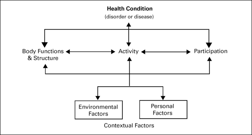 biopsychosocial model •psychological and social factors are frequently overlooked in epilepsy •the  biopsychosocial model incorporates these components into patient care.