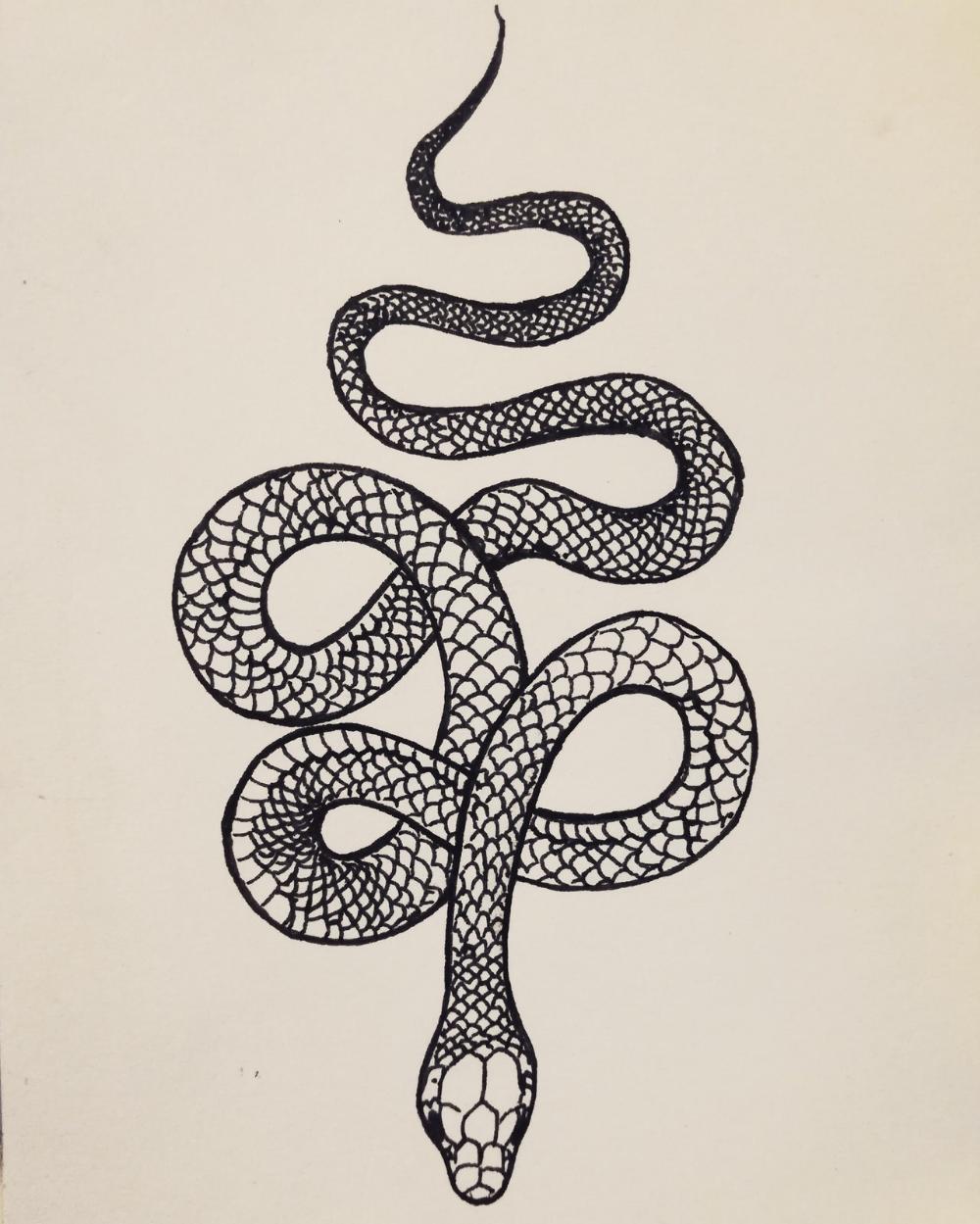 Cattattoo Shouldertattoo Snaketattoo Tattoohombre Snake Tattoo Design Henna Tattoo Designs Tattoos