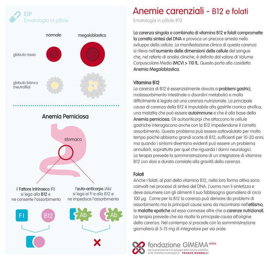 Ematologia in pillole #12 Le anemie carenziali- B12 e folati- Fondazione GIMEMA Onlus