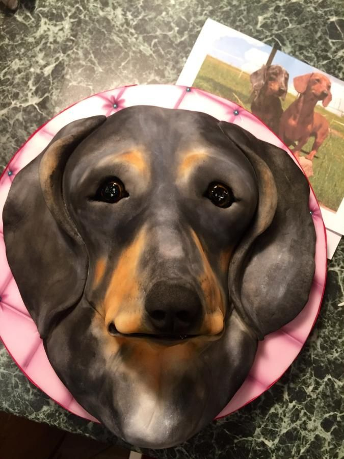 Dachshund Magiie - Cake by Andrea