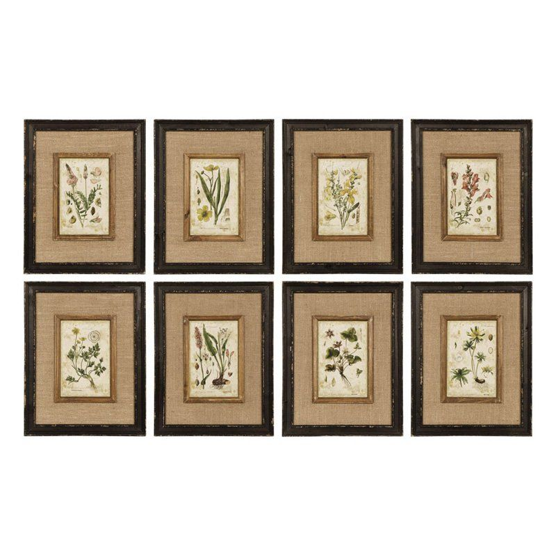 Napa Home and Garden Framed Horticultural Print Wall Panel