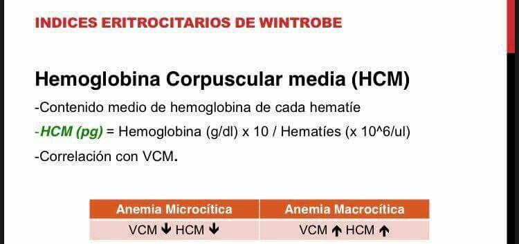hemoglobina corpuscular media vcm