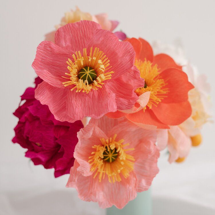 Photo of Icelandic Poppies  — The Lovely Ave