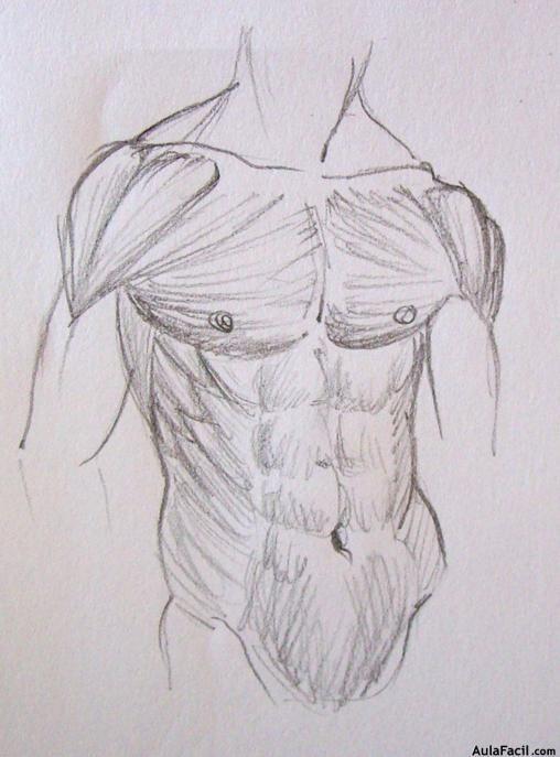 Dibujo-Anatomia (Heromex) | Anatomía, Dibujo y El musculo