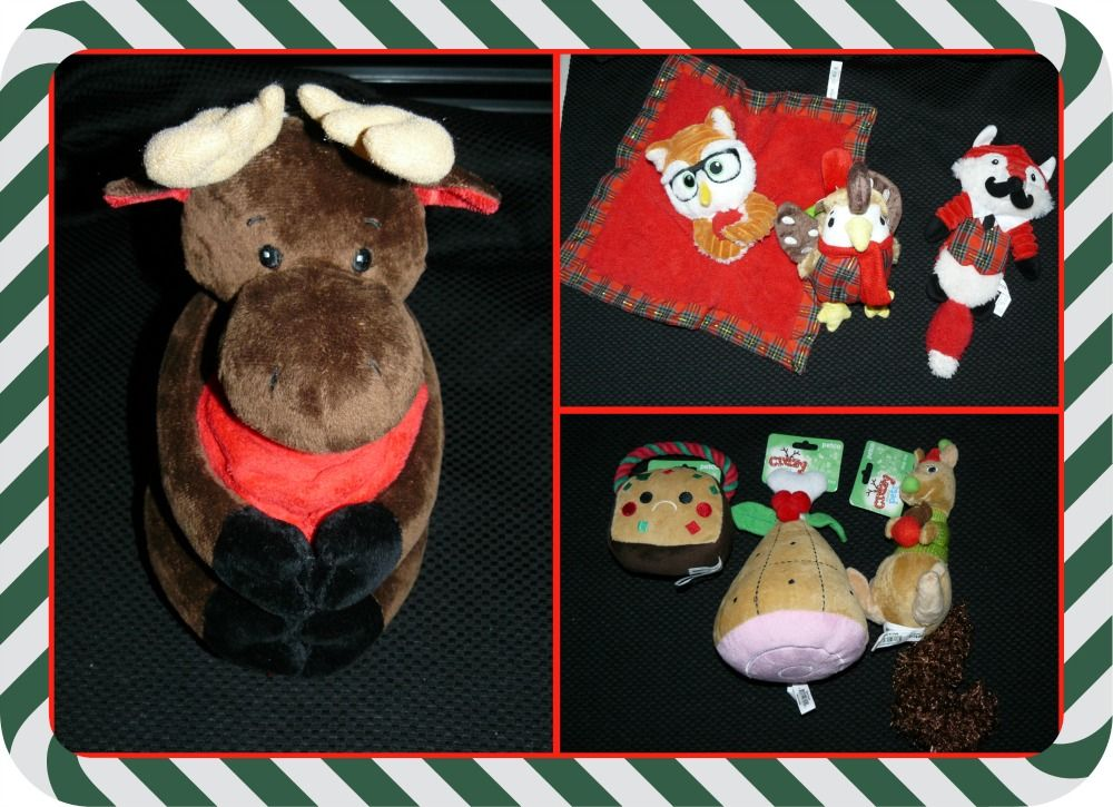Give Your Pets Gifts From Petco (With images) Pet gift