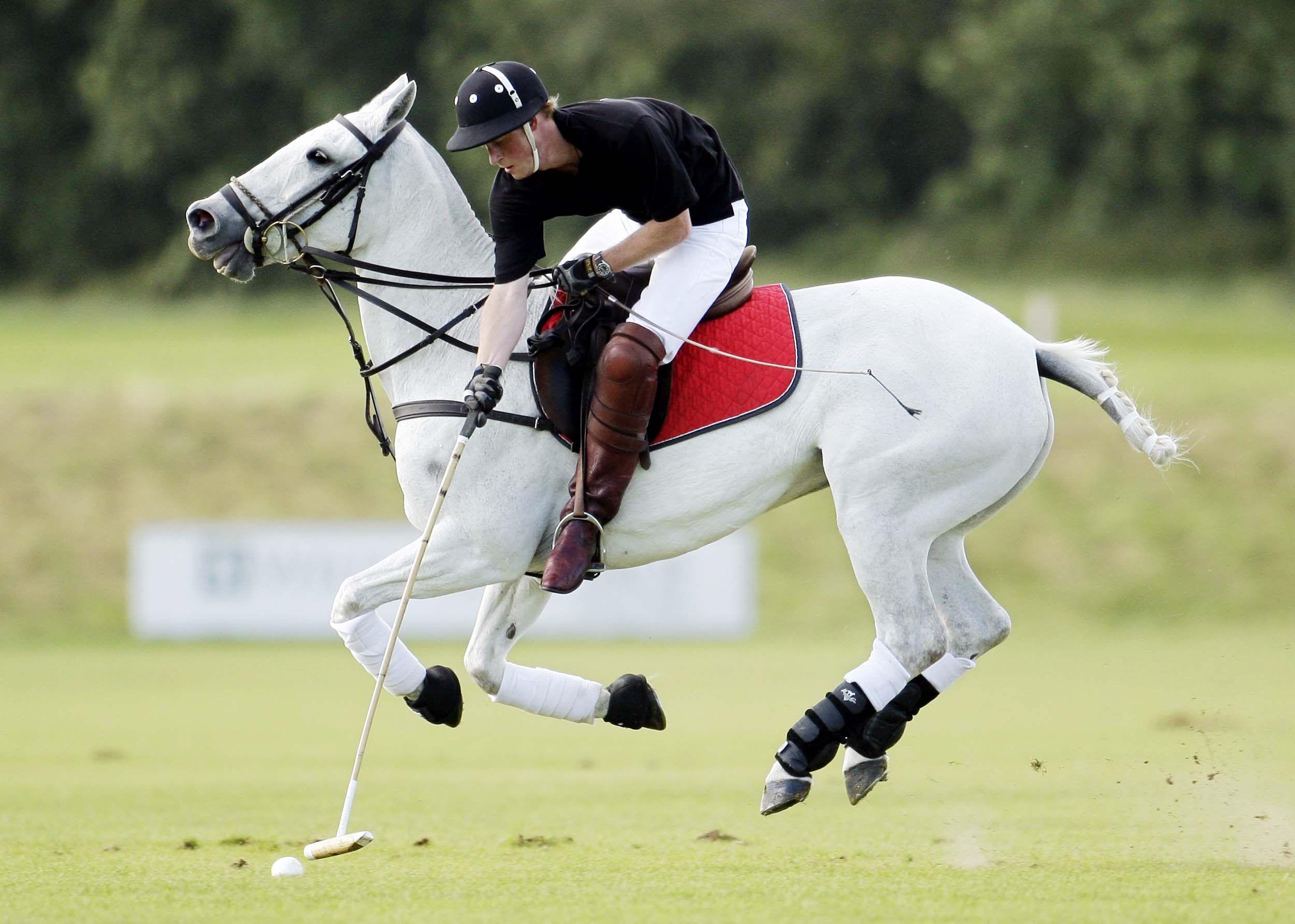 Prince Harry polo match