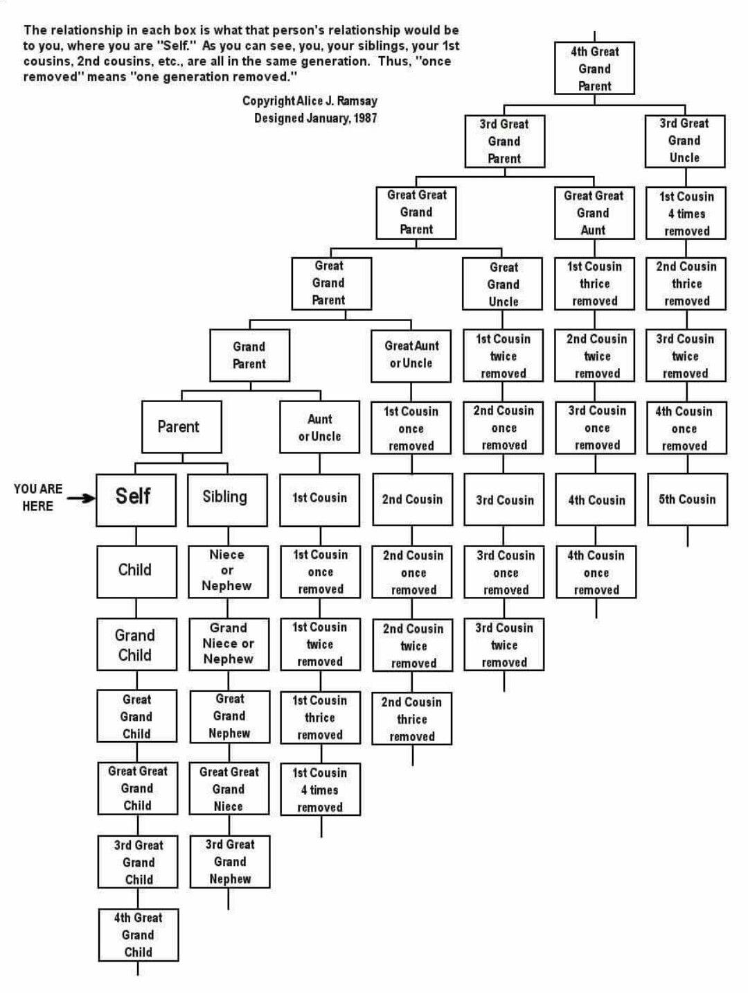 Ancestory Lineage