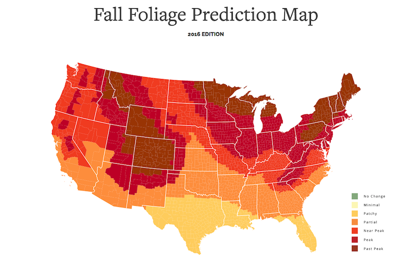 This Interactive Fall Foliage Map Shows You When Leaves ...