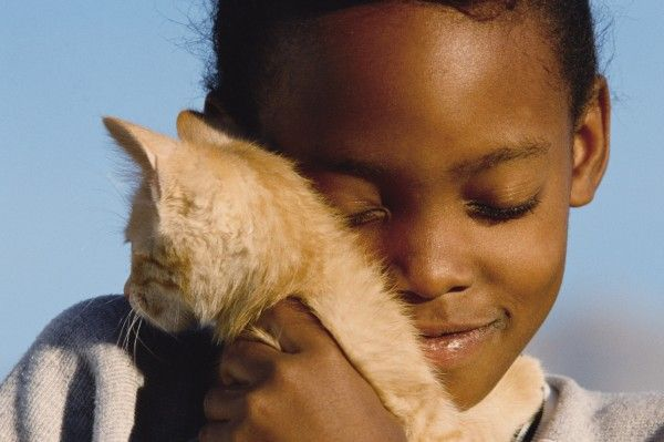 Teaching Kids How To Care for Pets | Alphamom