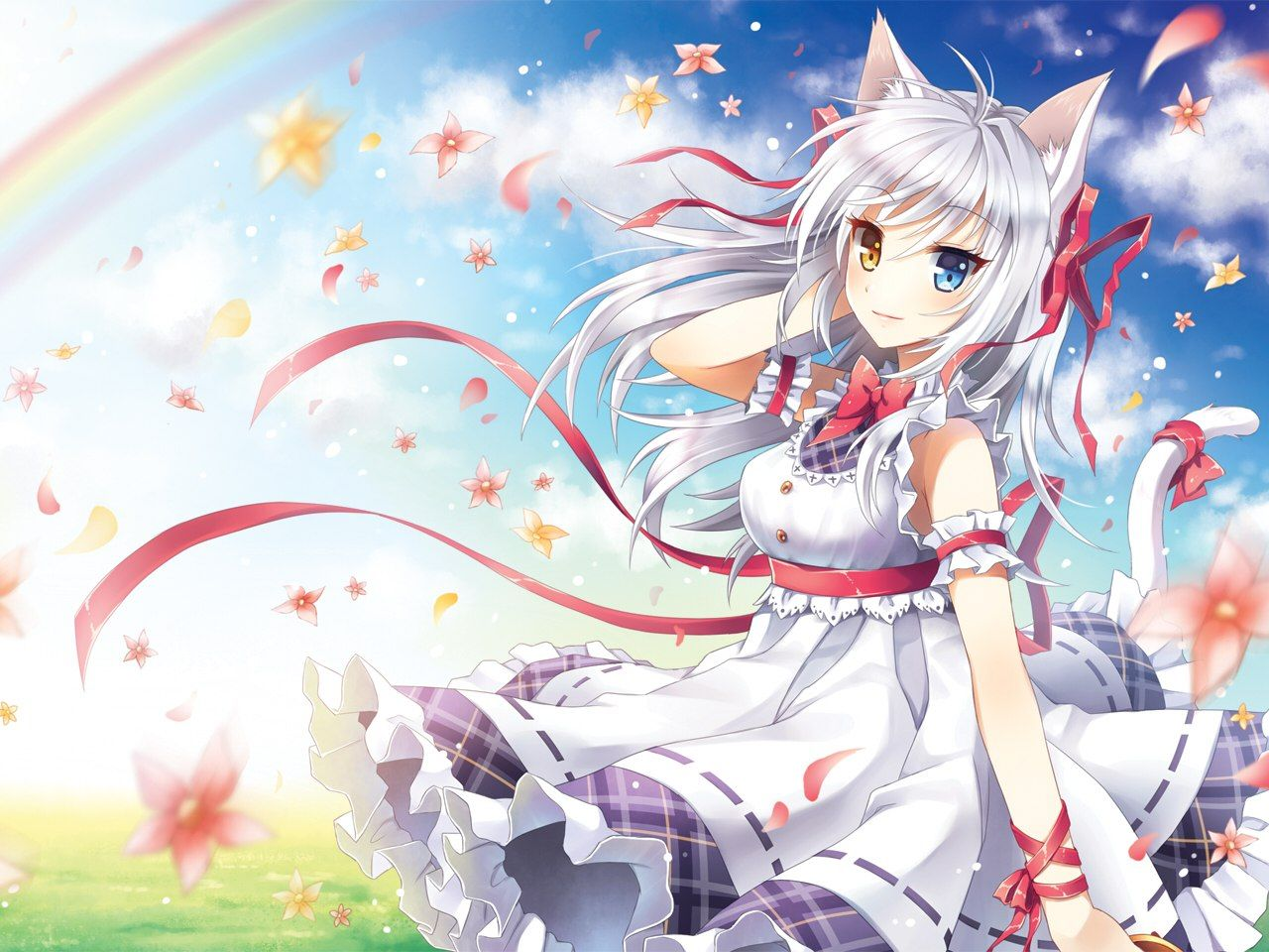 Anime Cat Girl with White Hair Wallpaper Nekomimi, Cat