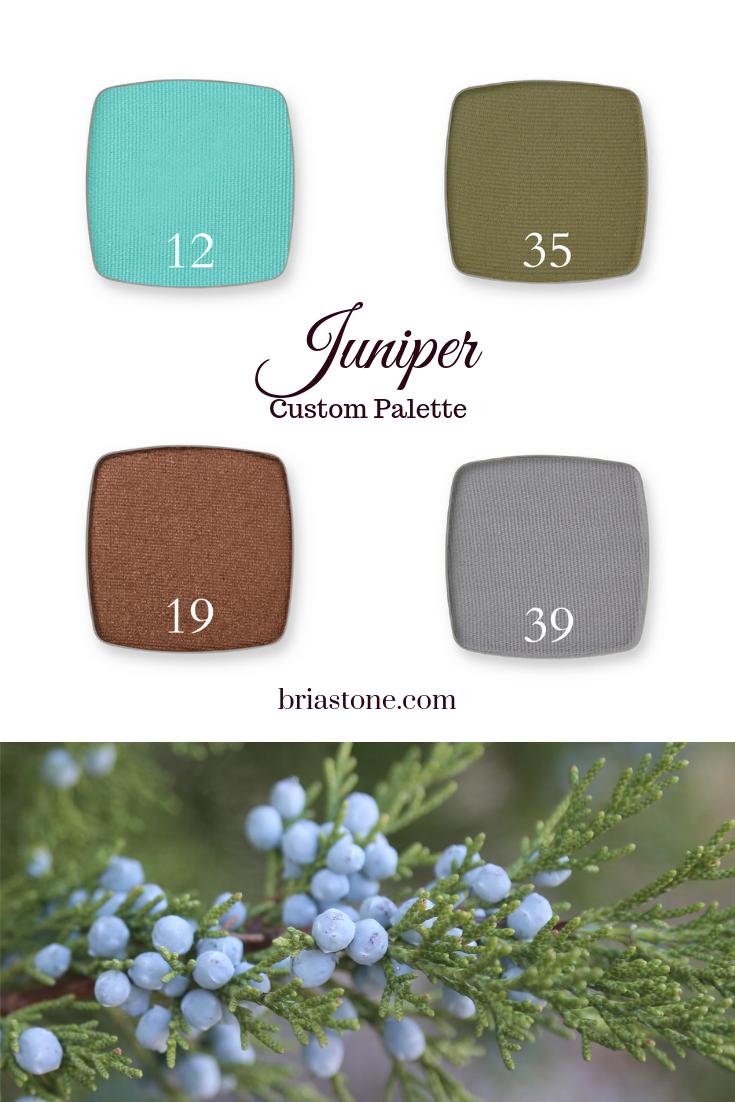 Juniper color palette inspired diy custom eyeshadow quad
