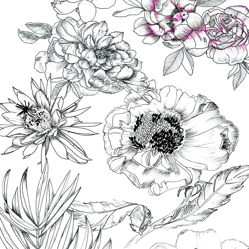 Looking forward to spring and all the greens 🌸🌿🌷🌱#illustration #artwork #linework #flowers #flowerstagram #floral #botanical #sketch #sketchbook #creative #zeichnung #rose #textiledesign #surfacedesign #pattern #patterndesign #hamburg #print #printandpattern #printdesign #mood #inspiration #blackandwhite