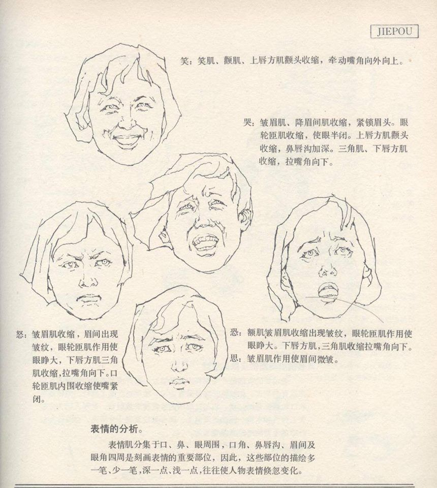 ArtBook115 | Human anatomy art, Anatomy art, Anatomy drawing