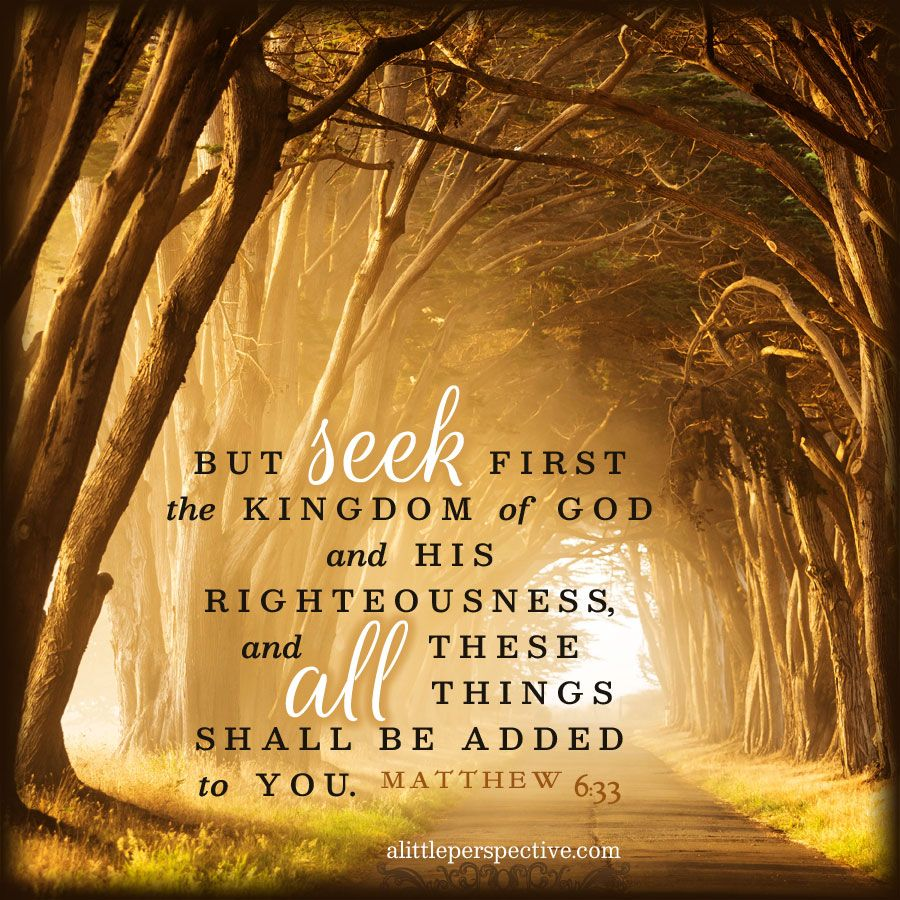 Matthew 6:33 NKJV But seek first the kingdom of God and His  righteousness, and all these things s… | Scripture pictures, Prayer  scriptures, Scripture verses