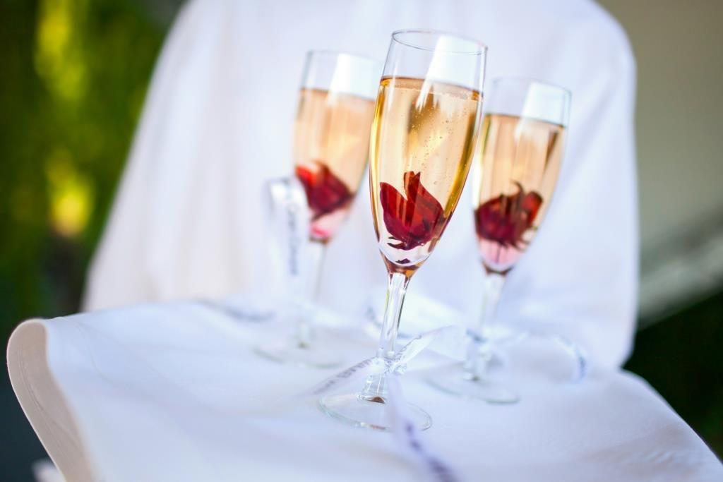 Hibiscusblomster  - Prinsessens Bryllup