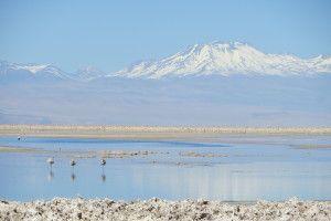 Chile - San Pedro de Atacama (39)