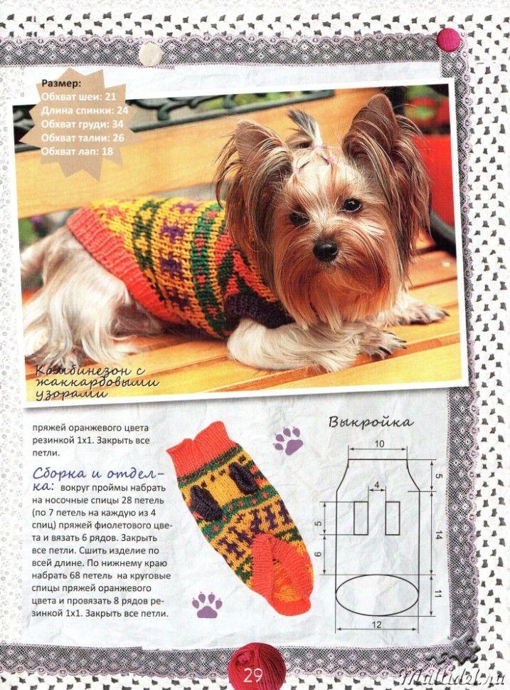 вязание для собак чихуахуа схемы и модели с описанием 22 тыс