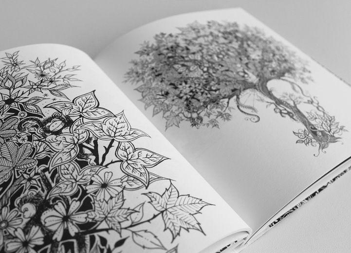 Colouring Book Johanna Basford Ladyinterior Post 115775630569 Secret Garden An Inky Treasure Hunt And