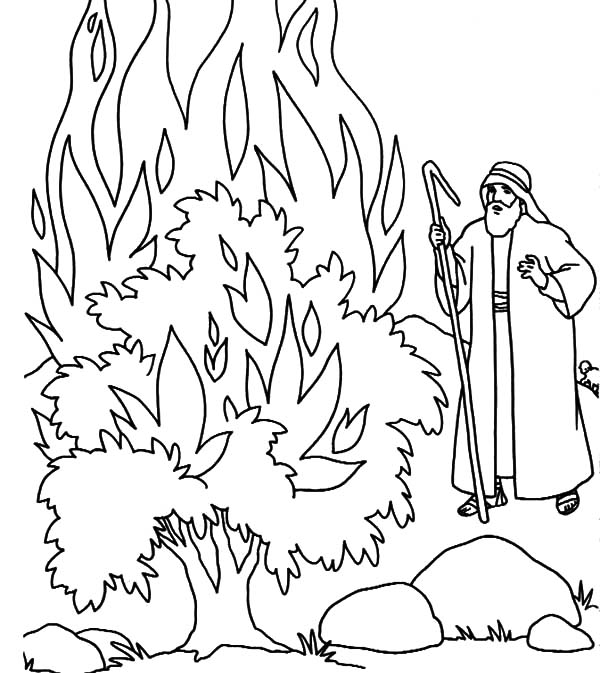 Fire Burning Bush In Fornt Of Moses Coloring Pages Netart