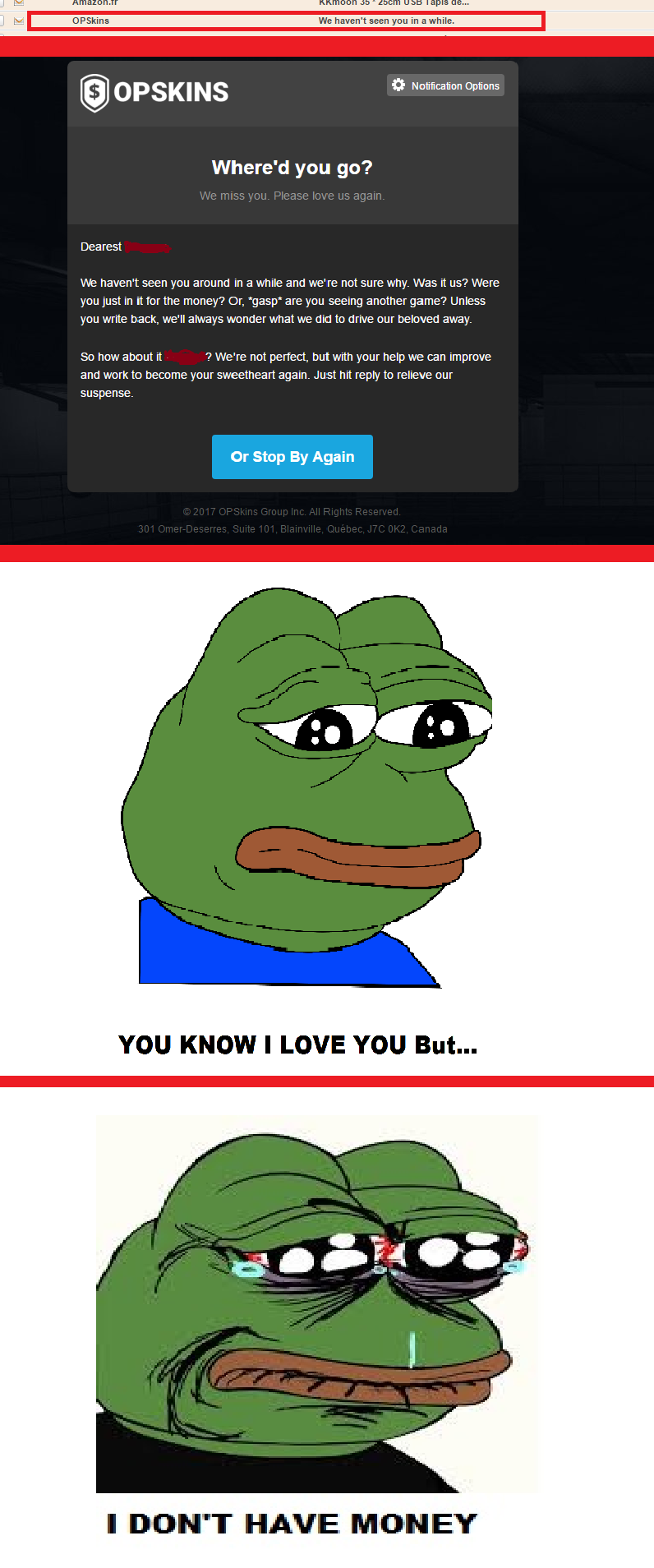 When OPSkins remind you that you don't have any girfriend