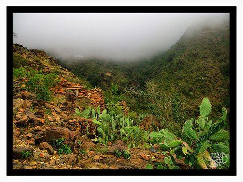 Asir Natural Landmarks Favorite Places Landmarks