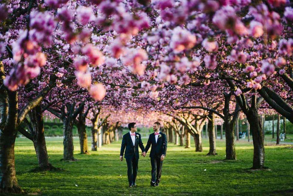 Jove Meyer Events Tree wedding, Brooklyn botanical