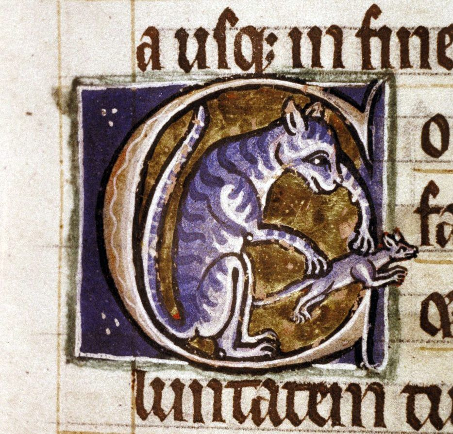 * Initial cat  Psalter, Canterbury ca. 1210-1220. Bodleian Library, MS. Ashmole 1525, fol. 14r