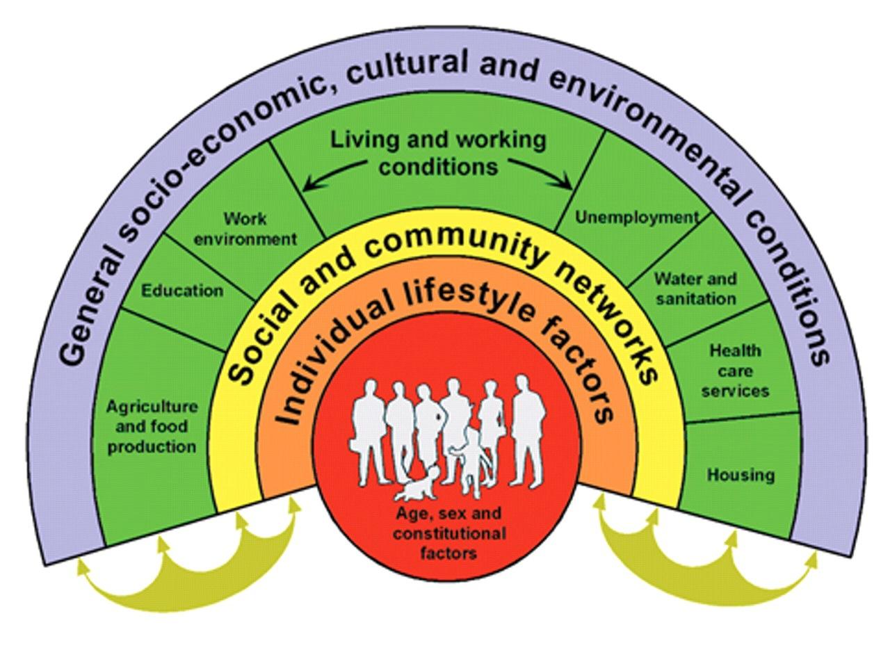 NACCHO Aboriginal Health SDoH News Delivering better